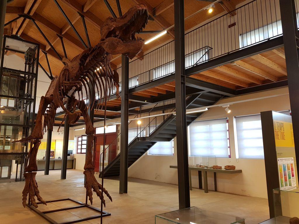 Museo Paleontologico Carbonia
