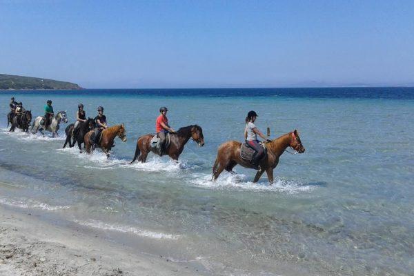 Escursioni a Cavallo Sulcis